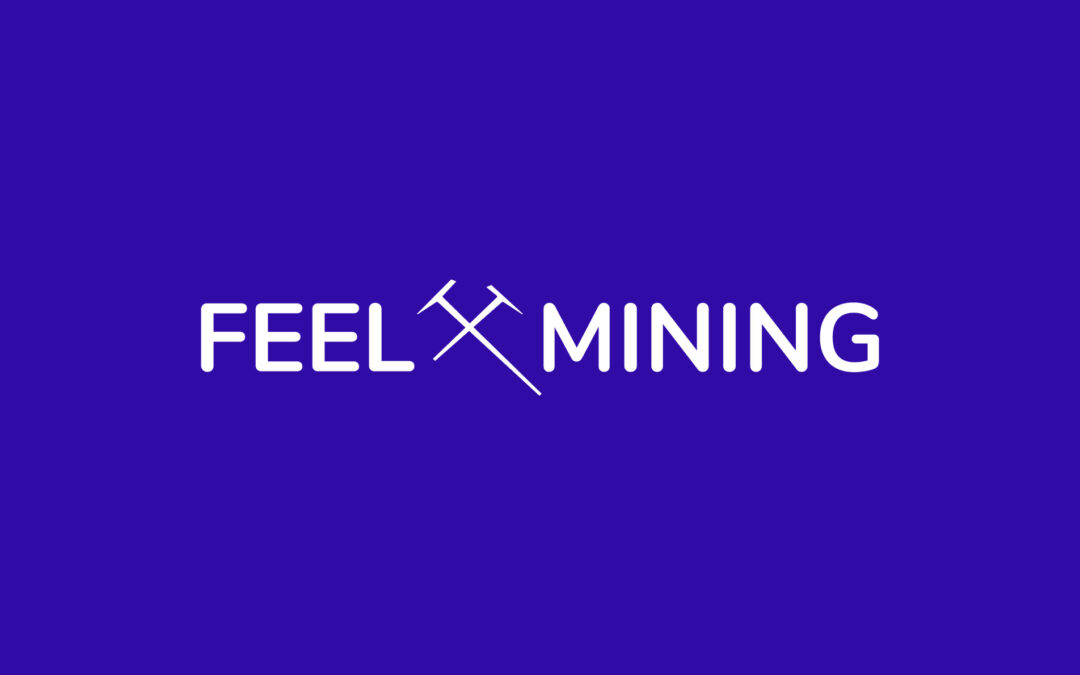 Feel Mining obtains DASP registration with the French Financial Market Authority (AMF)
